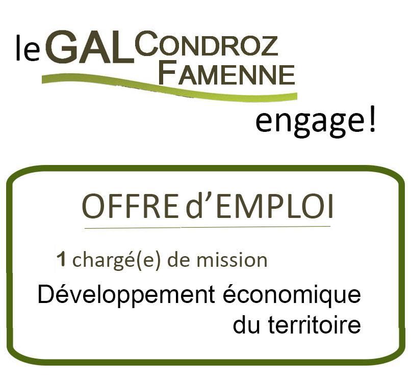 Offre d emploi developpeur economique